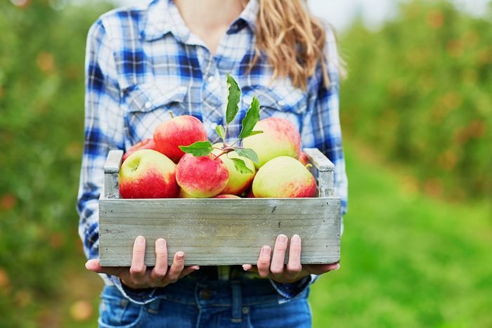 Lose weight fast, apples