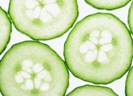 Cool cucumber: Our favourite cucumber recipes