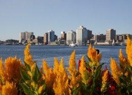 Canada's bluest communities: Halifax
