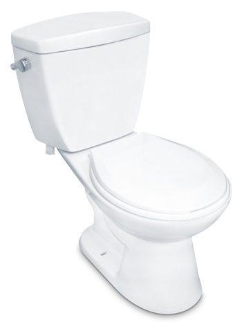 Pegasus toilet