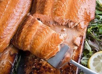 fish mackerel 353