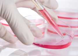 The killer cancer gene: What you should know about BRCA