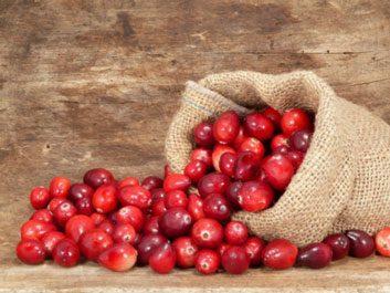 cranberry cranberries