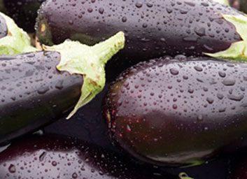 eggplants large
