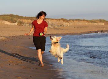 running beach dog