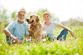 family dog outside