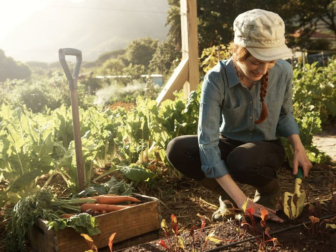 Why Female Farmers are on the Rise in Canada