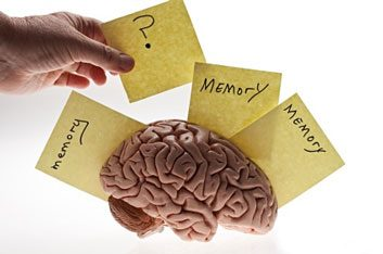 memorylossandbrain