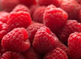 The foods to eat for healthy eyes