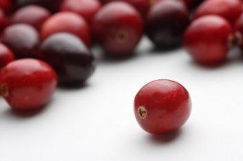 istock_cranberries-40924178.jpg