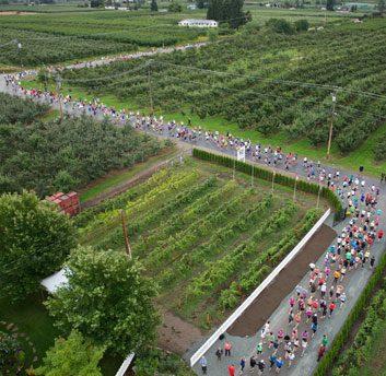9. Kelowna Wine Country Half Marathon