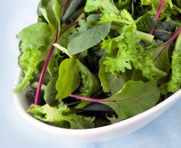 lettuce salad greens