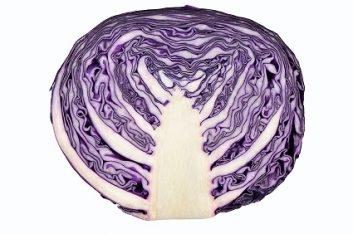redcabbage-57567745.jpg