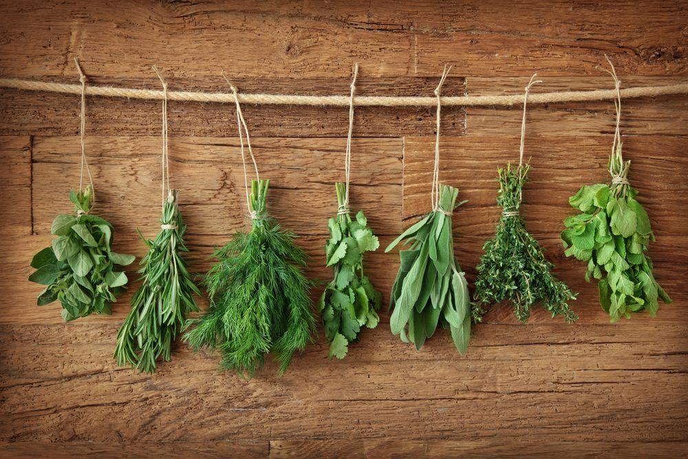 herb-garden