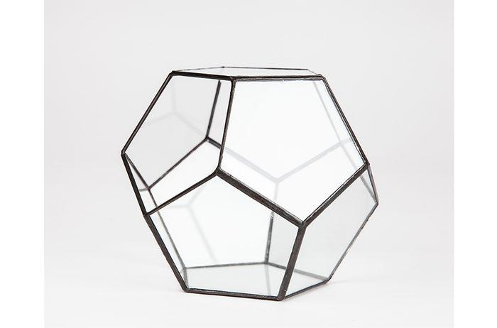 Terrarium-ebay