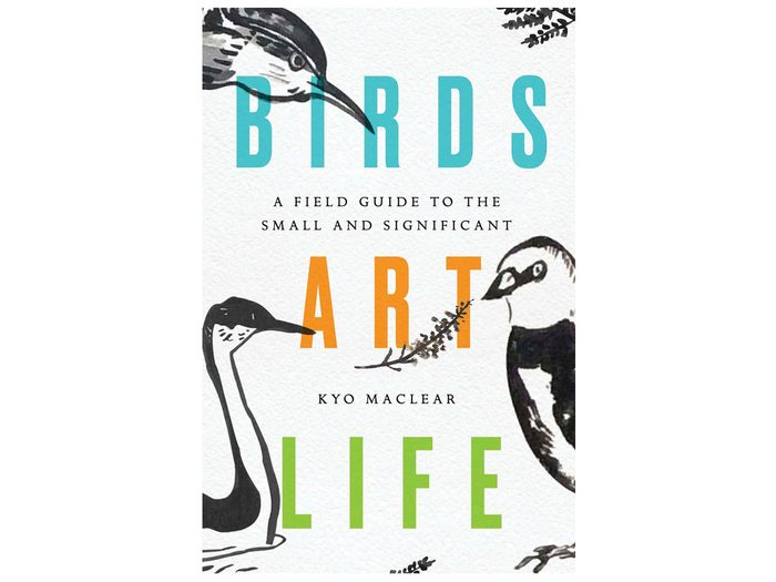 BirdsArtLife