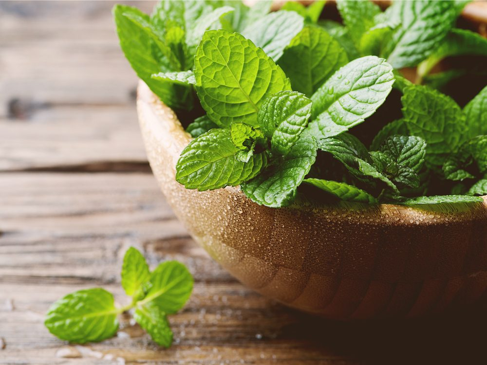 Mint is one of the surprising home remedies for acne