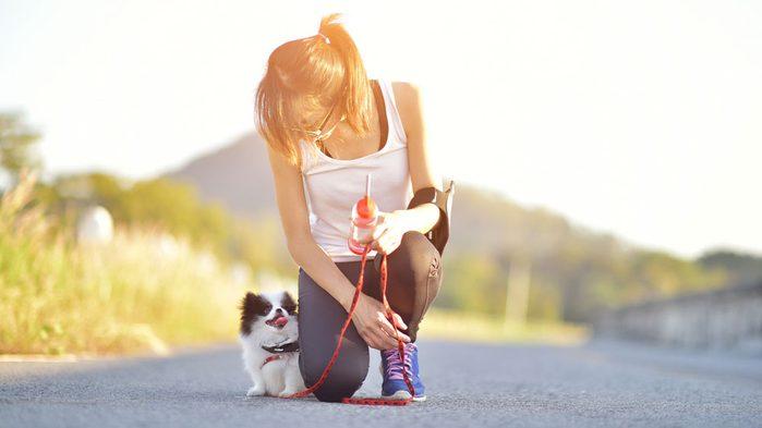 animal workouts canada, dog bootcamp