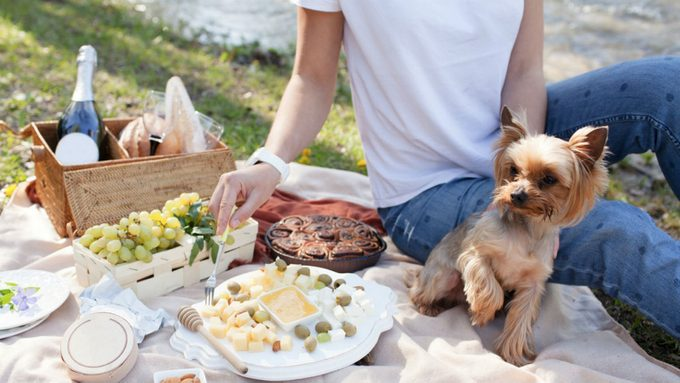 How many calories in cheese, a cheese platter picnic