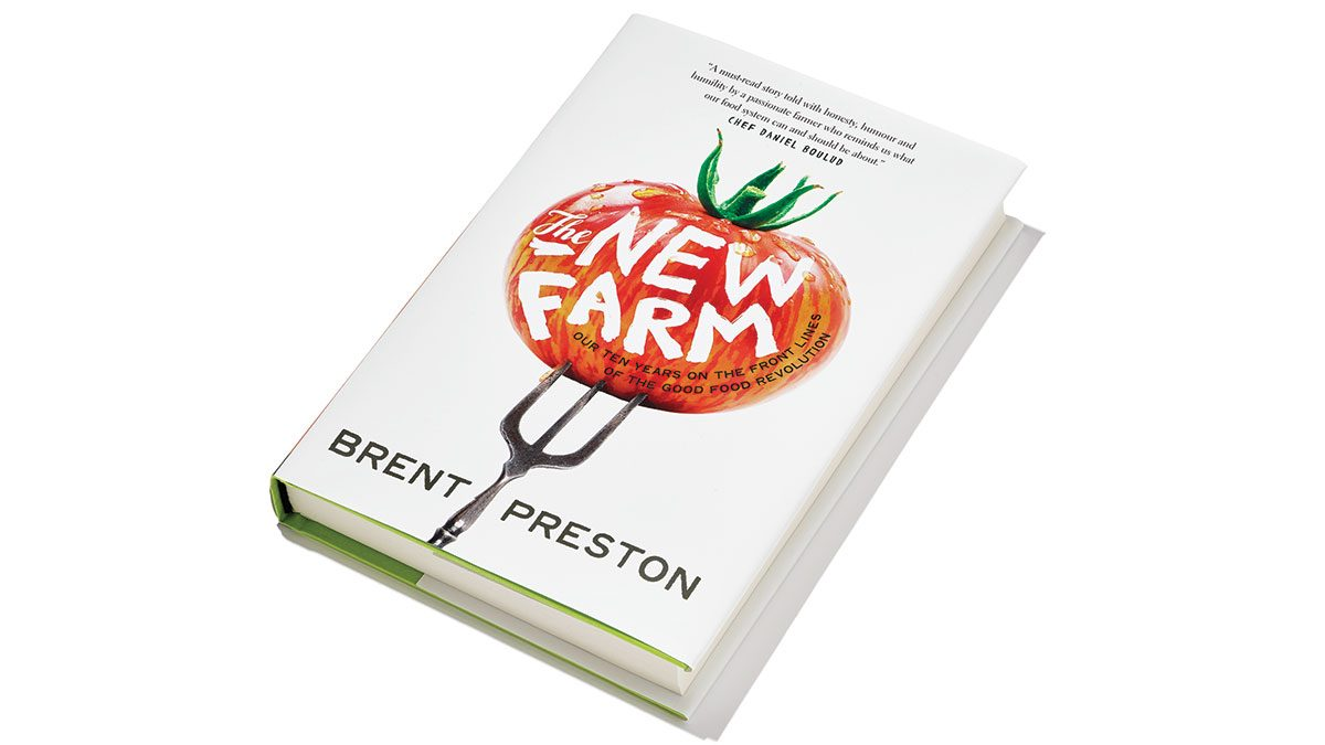 summer shopping, The New Farm book