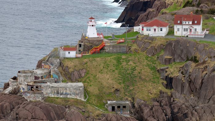 What to do in St. John's, The Cod Sounds Tour