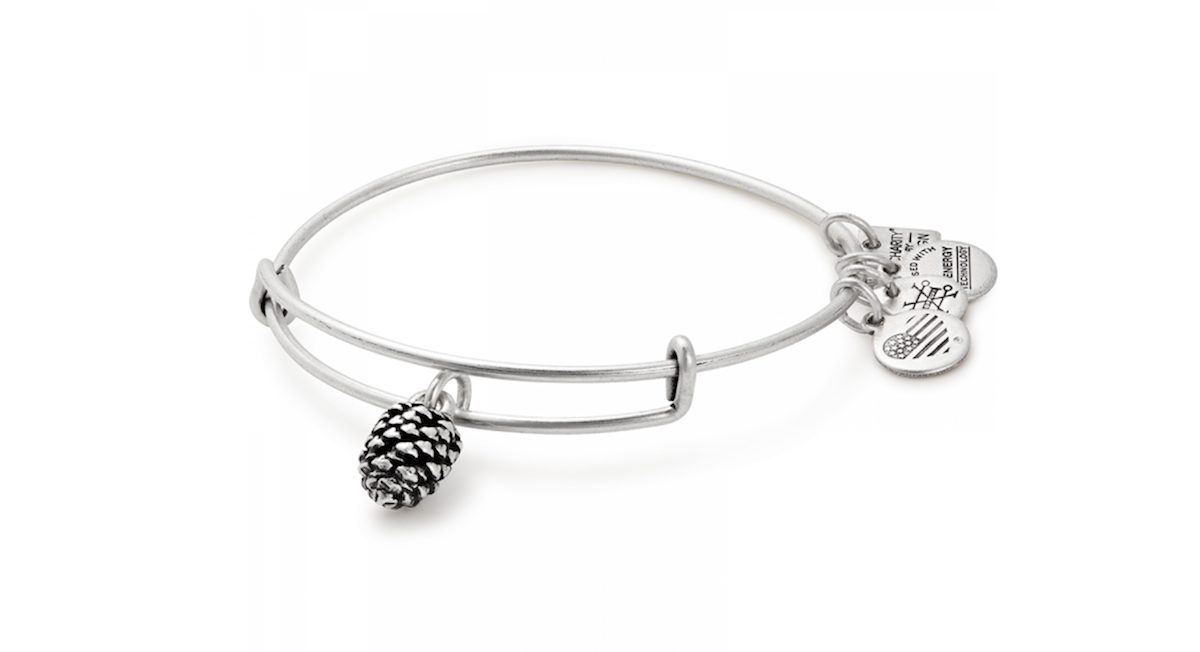 Giving Tuesday Charity Gifts Alex and Ani Pinecone Bangle