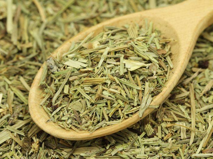 Herbal Remedies Horsetail