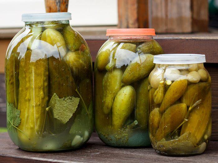 fat burning foods pickles