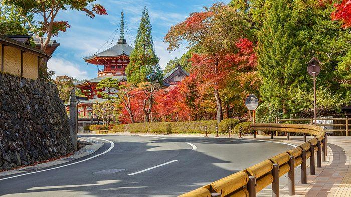 solo travel, Mt. Koyasan Japan