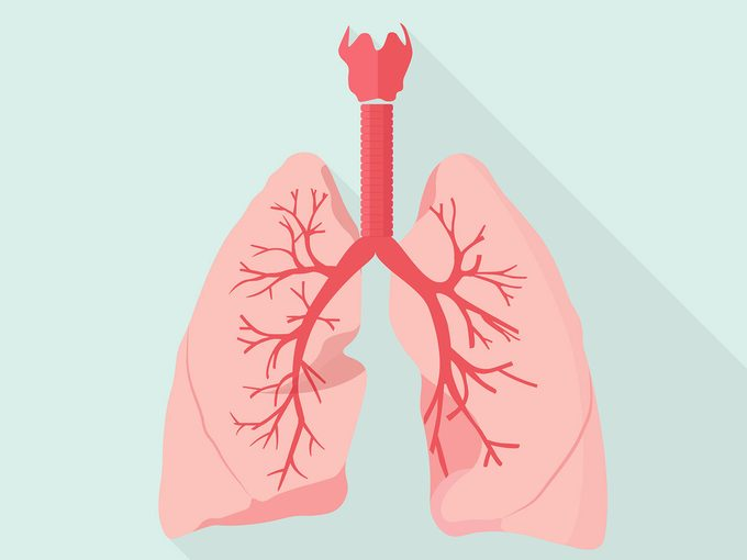 lungs home remedies for bronchitis