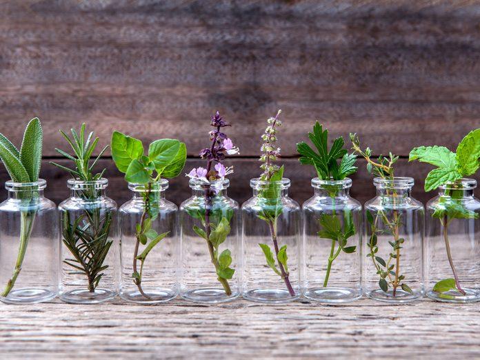 essential oils flowers