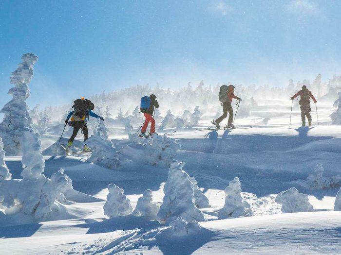 Ski Destinations in Canada