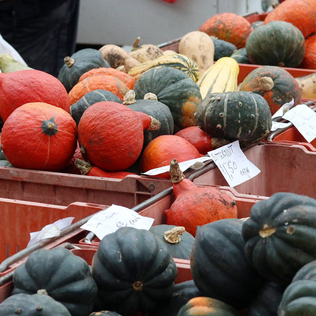 Farmers market goods display. Colorful winter squashes for sale in boxes at the autumn seasonal farmers market. Agriculture, farming and small business background. Harvest concept.; Shutterstock ID 1128537929; Job (TFH, TOH, RD, BNB, CWM, CM): TOH