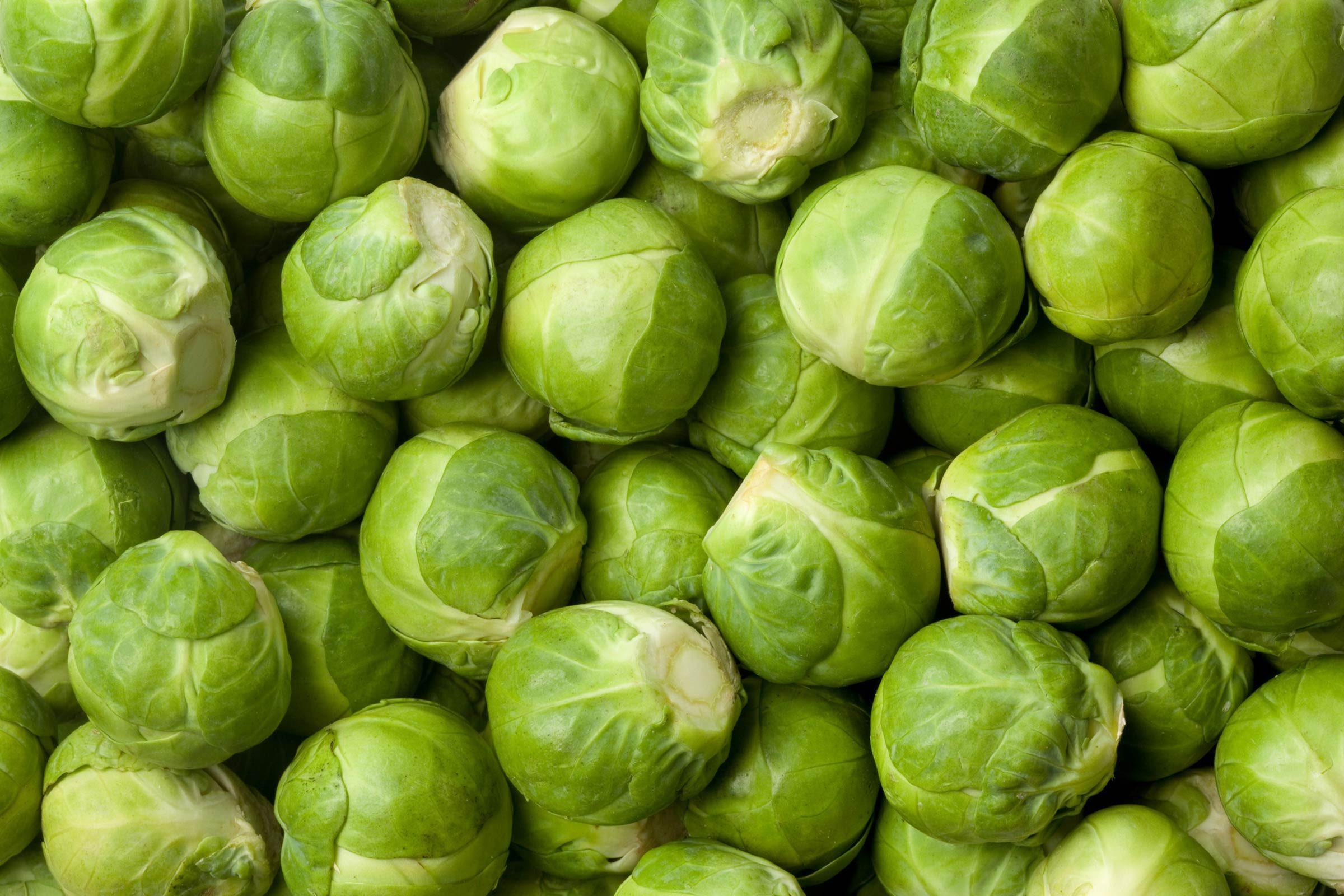 01_Sprouts_Surprising_Health_benefits_Gardening_