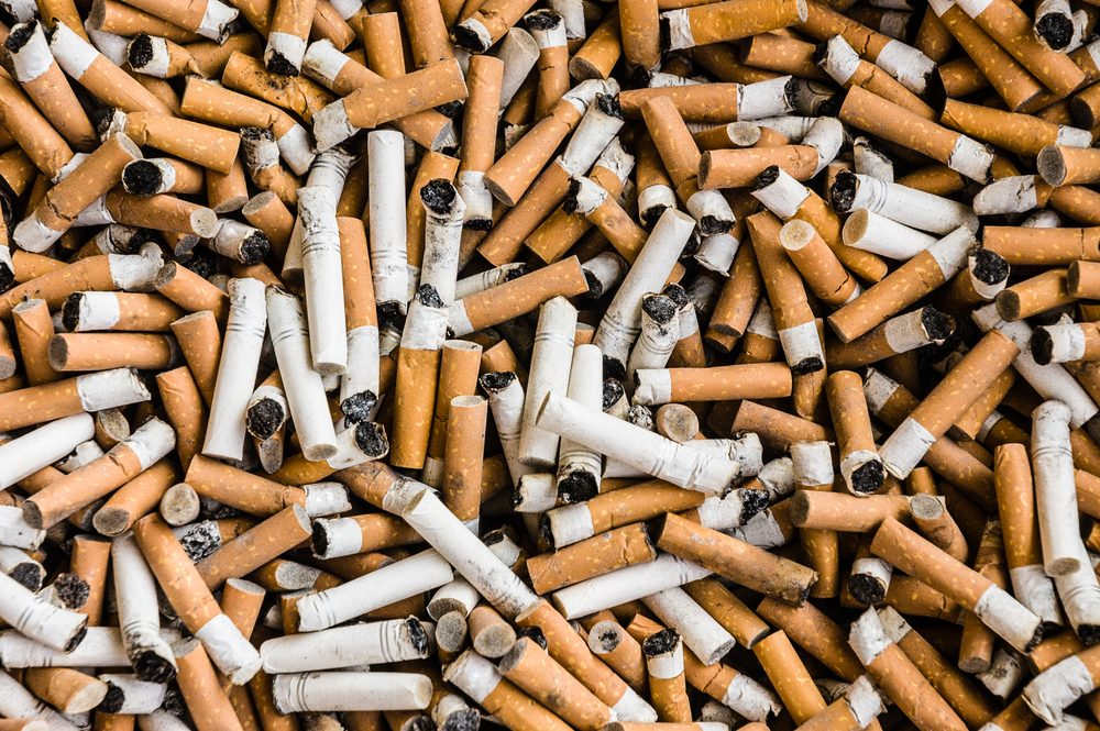 things that wreck your teeth   a lot of burnt cigarette butts with some ash