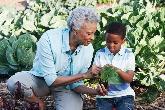 cause dehydration   grandmother and grandson gardening in backyard