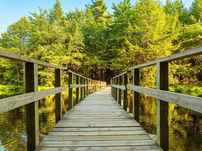 Best hikes in Canada - Kejimkujik National Park