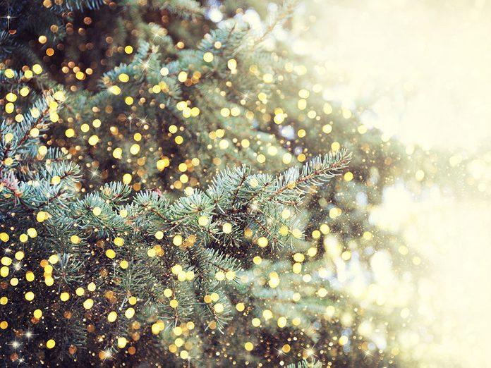 importance of making memories | christmas tree