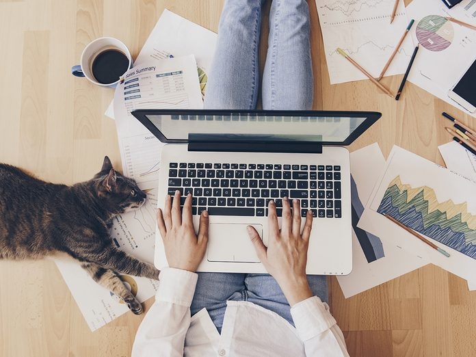 fix aches and pains when working from home   woman at home with cat   woman working from home