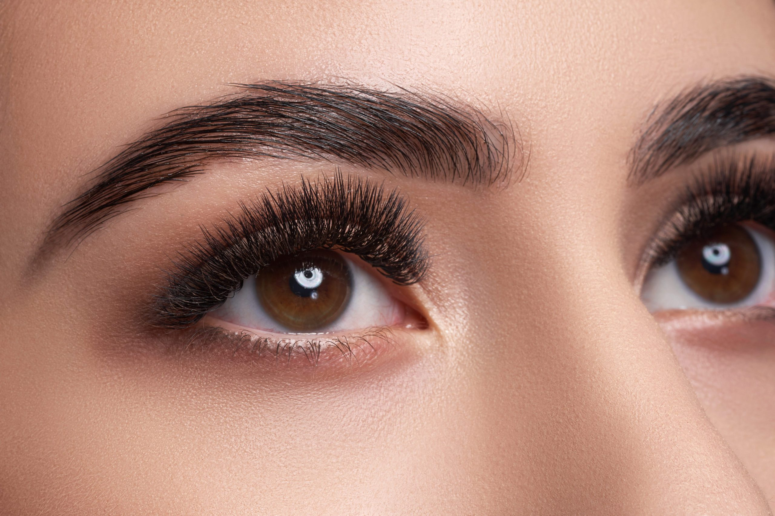 close up of a woman's eye and eyelashes
