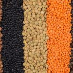 How Healthy Are Lentils? What Nutritionists Need You to Know