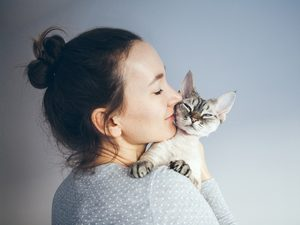 Are There Hypoallergenic Cats? 7 Allergy-Friendly Cat Breeds