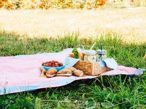 12 Perfect Recipes for Summer Picnics